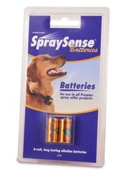 premier-6v-battery